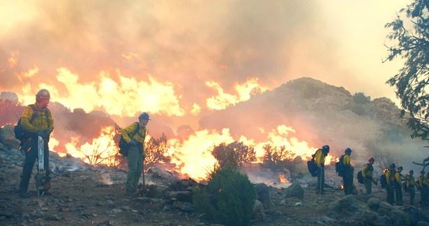 劇中では5件の山火事を描いていますが、8000㎡超えの人工の森を作って燃やしたりと迫力がスゴい。特にヤーネルの火災の再現は息をのむ臨場感!