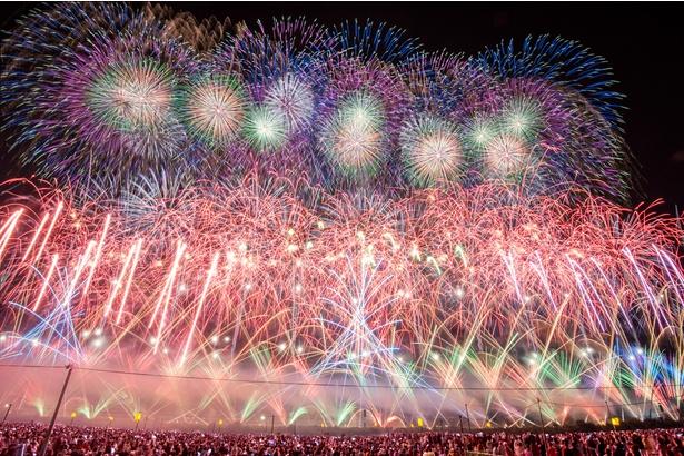 圧巻の花火に大勢の観客が歓喜