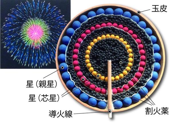 【写真を見る】八重芯の断面。構造をわかりやすくするために星に彩色しているが、実際の火薬の色は割火薬と同じ黒色
