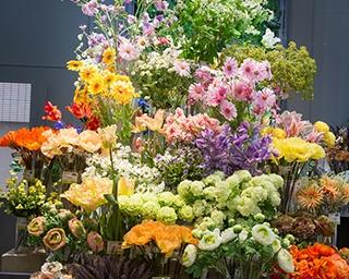 1階フロアにぎっしりと並ぶカラフルなフラワーは通りからよく見える。1〜4階フロアまで造花、花器、ウエディング資材、クラフト雑貨がぎっしり