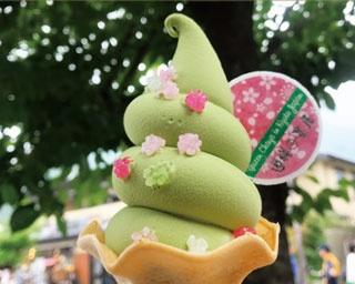 「抹茶ソフトクリーム」(470円)/祇園辻利 祇園本店