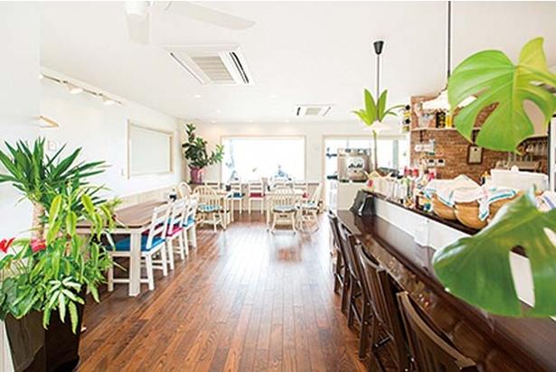 Cafe BEACH COMBER / 白を基調とした店内