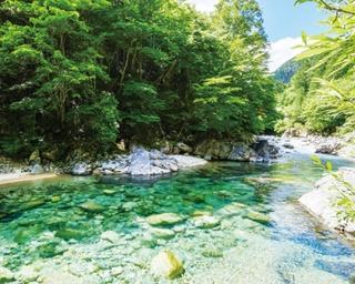 輝く清流と緑に癒される東海エリアの水辺さんぽ