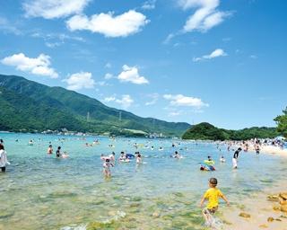 対岸の敦賀半島から約800m離れた島。ビーチは島の西側に広がる