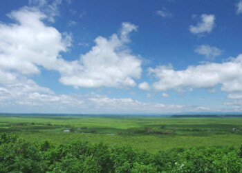 美しい湿原の緑と空の青のコントラストがすばらしい