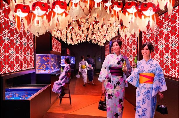 日本の夏の風物詩である金魚約1000匹を集めた夏まつり「東京金魚ワンダーランド2018」が開催!