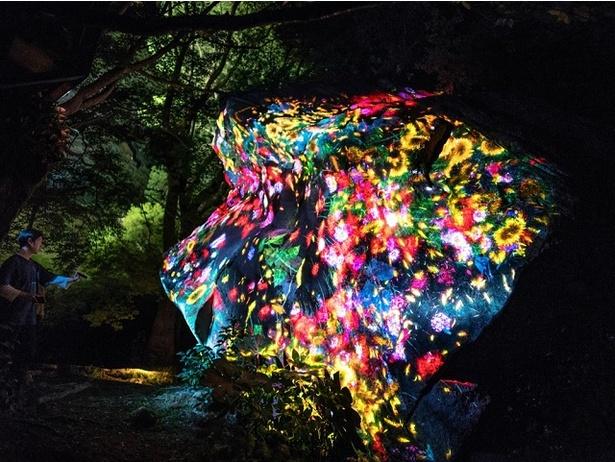 「増殖する生命の巨石」 巨石の造形そのものに、繰り返される花々の誕生と死滅が描かれる