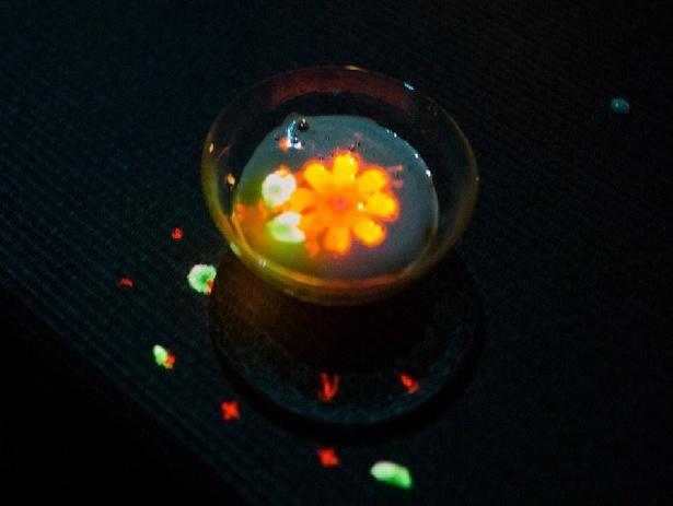 「EN TEA HOUSE - 幻花庵」にて体験できる「小さきものの中にある無限の宇宙に咲く花々」