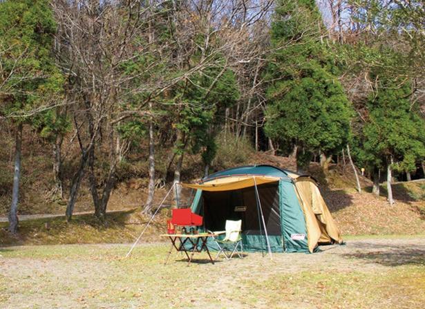 阿蘇ファンタジーの森キャンプ村 / 自然の地形を生かしたオートフリーサイト
