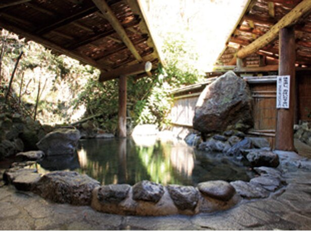 【写真を見る】ファミリーに好評の混浴露天「阿蘇ファンタジーの森キャンプ村」