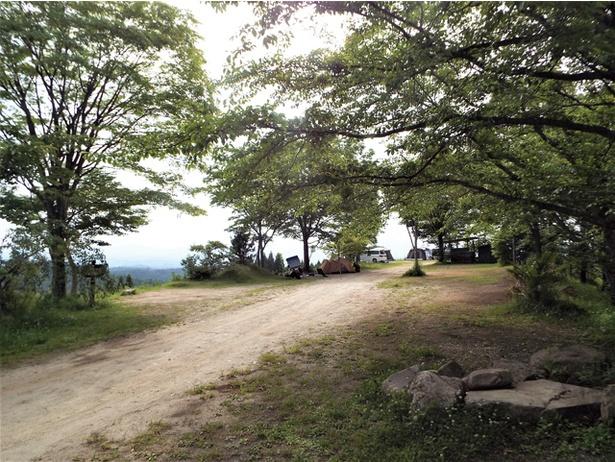 蔵迫温泉さくら オートキャンプ場 / オートキャンプ場は木々を抜けると雄大な阿蘇山が眼前に広がる