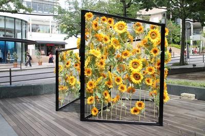 施設内のあちこちに花がいっぱい。ひまわりウォールにも注目!(写真は2018年時)