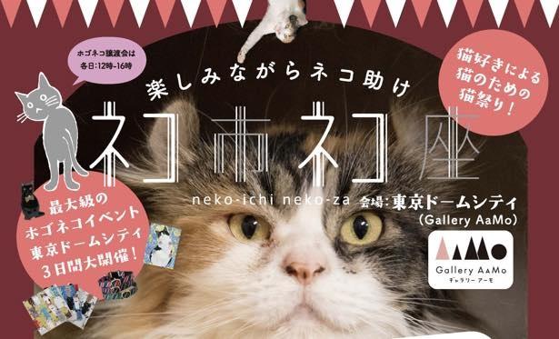東京ドームシティで猫イベント開催