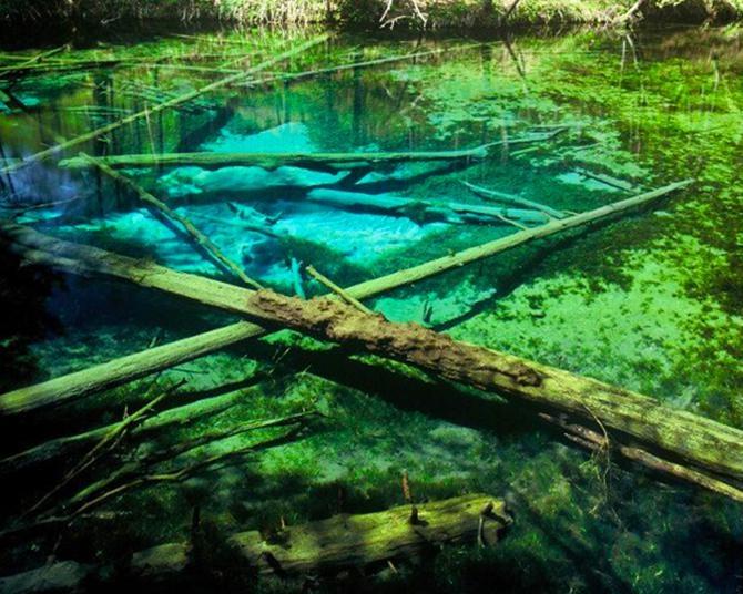 神様からの贈り物のように美しい神の子池
