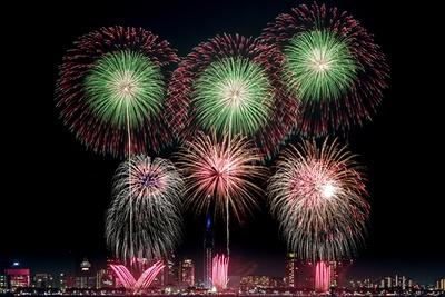 【写真を見る】夏や花火がテーマの音楽とシンクロした花火が夜空を彩る