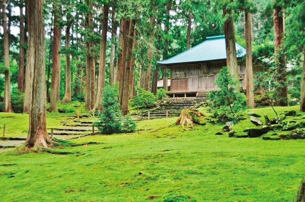 1574(天正2)年の一向一揆の焼き討ちにより全山焼失。現在の拝殿は、江戸時代後期に建てられた。コケが生い茂る林は、避暑地としても人気が高い