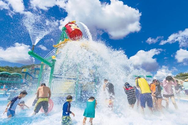 日本モンキーパーク「水の楽園モンプル」