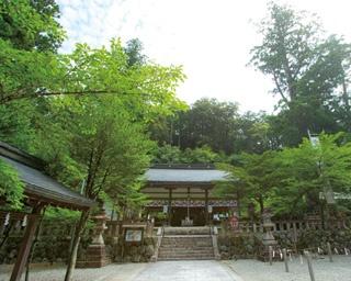 日裏川、木津川、四郷川が合流する夢淵。紺碧に見える清流は、水神宗社の聖域にふさわしい景観。晴れた日の午前中がキレイに見えるとか/丹生川上神社