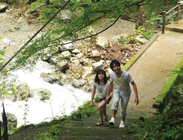 【写真をみる】駐車場から滝観賞スポットの奥かえで橋までは遊歩道が/原不動滝
