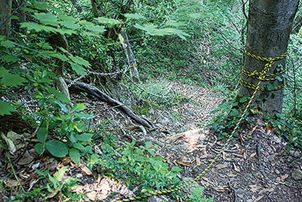 【写真をみる】急斜面の難所にはロープなどがしっかりと用意されている/シワガラの滝