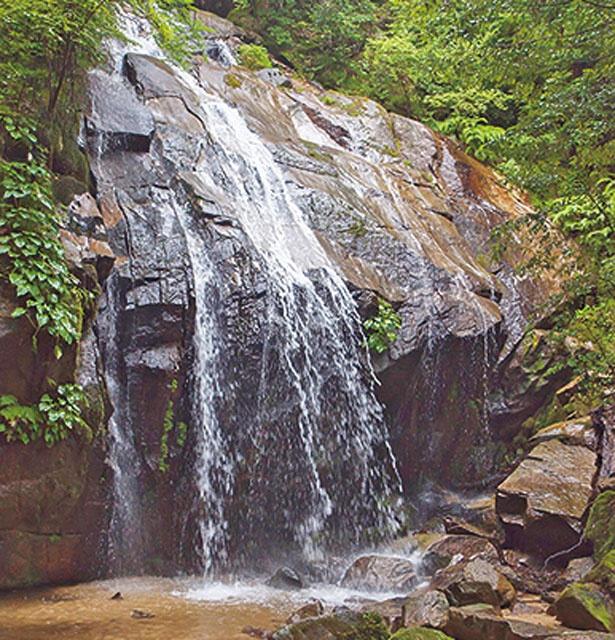 【写真をみる】向かって右側を流れる幅の広い滝が男滝/金引の滝