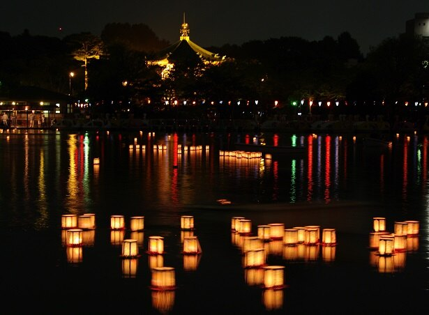 灯籠流しが行われる夜の不忍池。水面に浮かぶ淡い明かりが観覧客を魅了