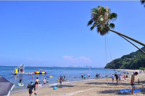 【写真を見る】「能古島キャンプ村海水浴場」はヤシの木に囲まれ、南国ムードたっぷり!