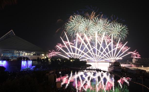 横浜・八景島シーパラダイスオリジナルのエンターテインメント花火ショーだ