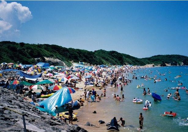 脇田海水浴場 / 多くの海水浴客でにぎわう