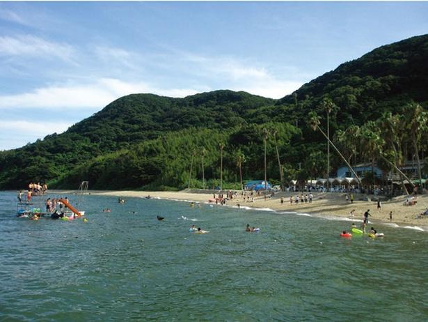 能古島キャンプ村・海水浴場 / 大自然の中にある広々とした美しいビーチ