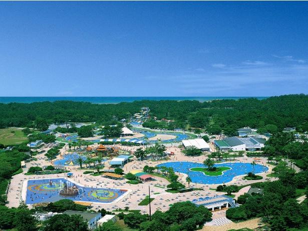 「海の中道海浜公園 サンシャインプール」は、広大な敷地に6種類のプールと水遊び広場を備える