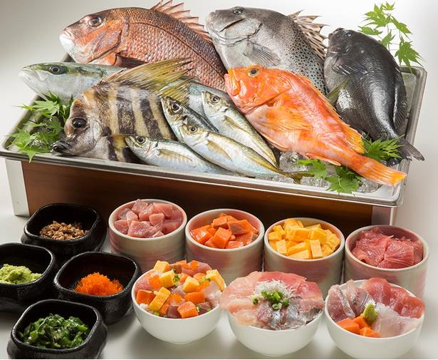 8月限定の海鮮のっけ丼では、好きな海鮮を好きなだけのせて食べられる