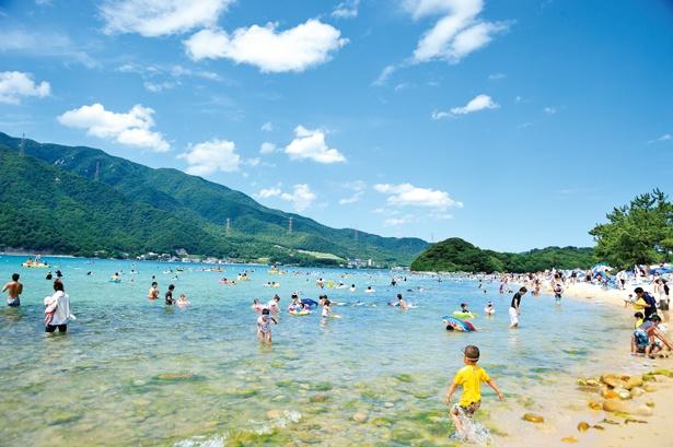 【写真を見る】敦賀半島から約800m離れた場所にある無人島は秘境感たっぷり!