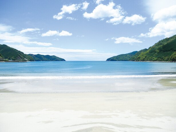 海水浴は、8月31日(金)まで。7月29日(日)は国体予選に併せてさまざまなイベントを開催予定だ!