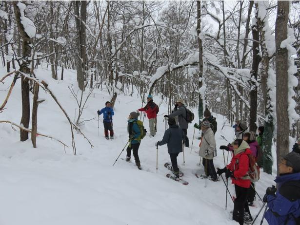 旭山動物園/2017年冬に行われた自然観察会のようす