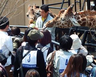 旭山動物園/予約制イベント「エサやり観察ガイド」のようす