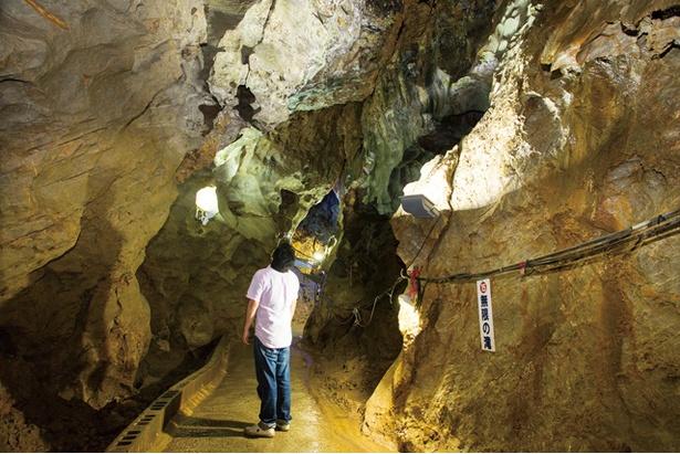 稲積水中鍾乳洞 / 「無限の滝」。「登り龍」の近くで、周りには天井から落ちる水滴でできたツララ石や、タケノコの形をした石筍(せきじゅん)など貴重な鍾乳石がある