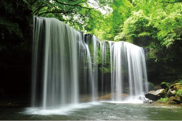鍋ヶ滝公園  / 滝の眺めもさることながら、心地よい木漏れ日と青々と茂る自然に包まれた好ロケーション