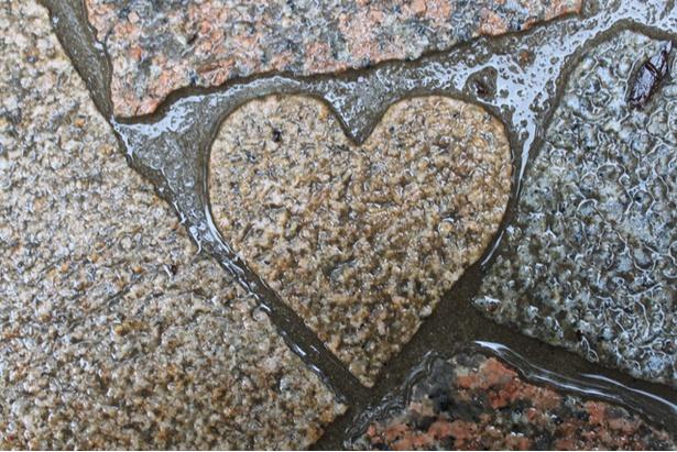 鍋ヶ滝 / 駐車場から滝までの道には、ハート型の石が6つ隠れているので見つけてみよう