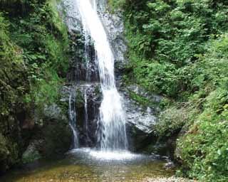 高さ30m、幅約4m。老いを養うと信じられた養老の水の神秘的なパワーが伝わってくる