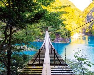 絶景!世界が認めた「夢の吊橋」とその周辺を巡るドライブ〈静岡〉