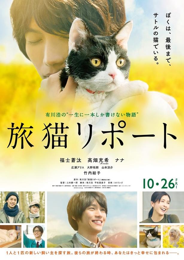 映画「旅猫リポート」本予告&ポスタービジュアル解禁!福士蒼汰と猫の息ピッタリの演技に注目