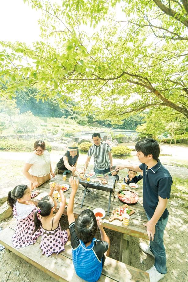 一本松公園(昭和の森) / 公園内には木陰が多く、水辺に近いところを選ぶと、より涼しい
