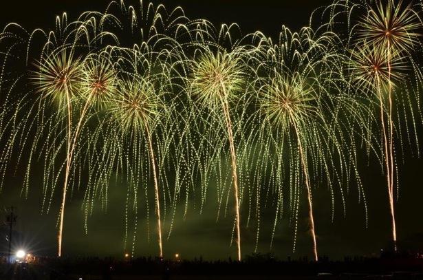 音楽花火を筆頭に約1万2000発が夜空を彩る