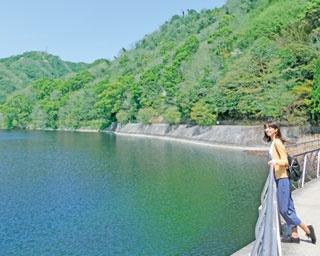 4つの滝で最も大きい雄滝/布引の滝