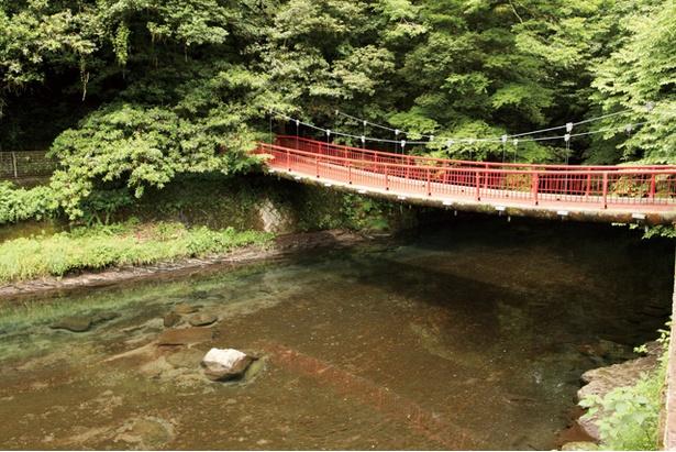 菊池渓谷 / 入口付近の川にかかるつり橋