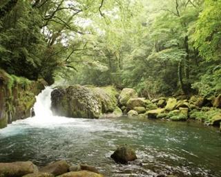 2年ぶりに蘇った人気避暑地!熊本・菊池渓谷周辺のドライブスポット4選