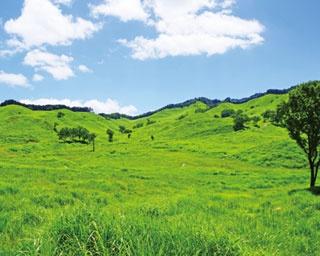標高800~1000mの高原地帯/砥峰高原