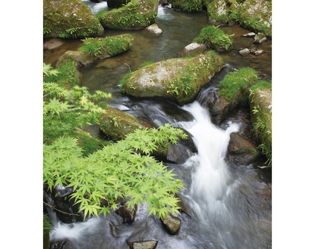 148mの高低差がある渓谷「王滝渓谷」。巨石や奇石が続くその姿は迫力満点だ