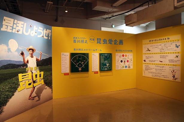 館内を進むと香川の昆虫愛企画を発見。香川照之のドリームチームがなかなか興味深い